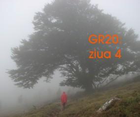 gr204