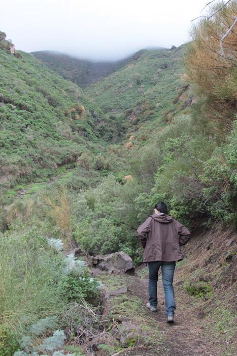 În pliurile muntelui