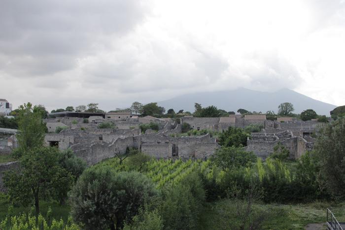 Parcul arheologic - vedere de ansamblu