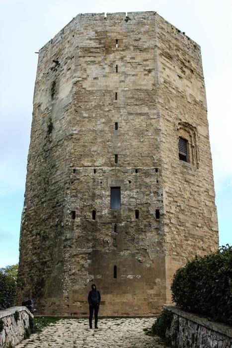 Turnul lui Frederic al II-lea